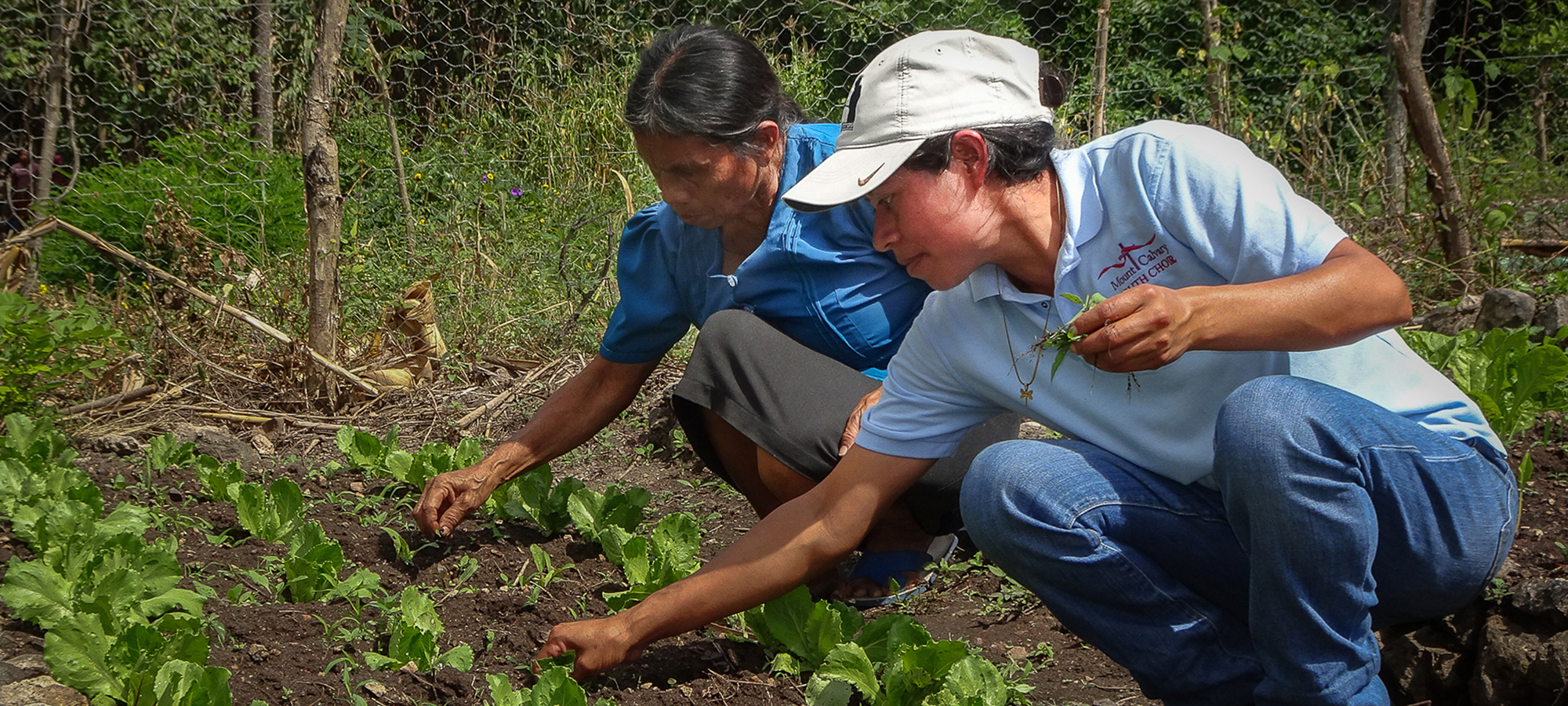 spAgroecological